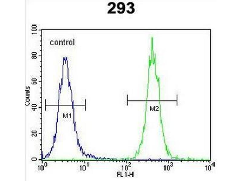 Flow Cytometry (FACS) image for anti-CC85C (AA 63-93), (N-Term) antibody (ABIN951080)