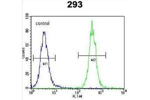 Flow Cytometry (FACS) image for anti-CC85C (AA 63-93), (N-Term) Antikörper (ABIN951080)