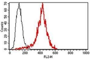 Image no. 1 for anti-Perforin 1 (Pore Forming Protein) (PRF1) antibody (PE) (ABIN1383925)