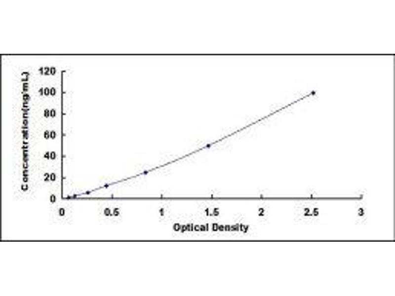 Low Density Lipoprotein Receptor-Related Protein 1 (LRP1) ELISA Kit