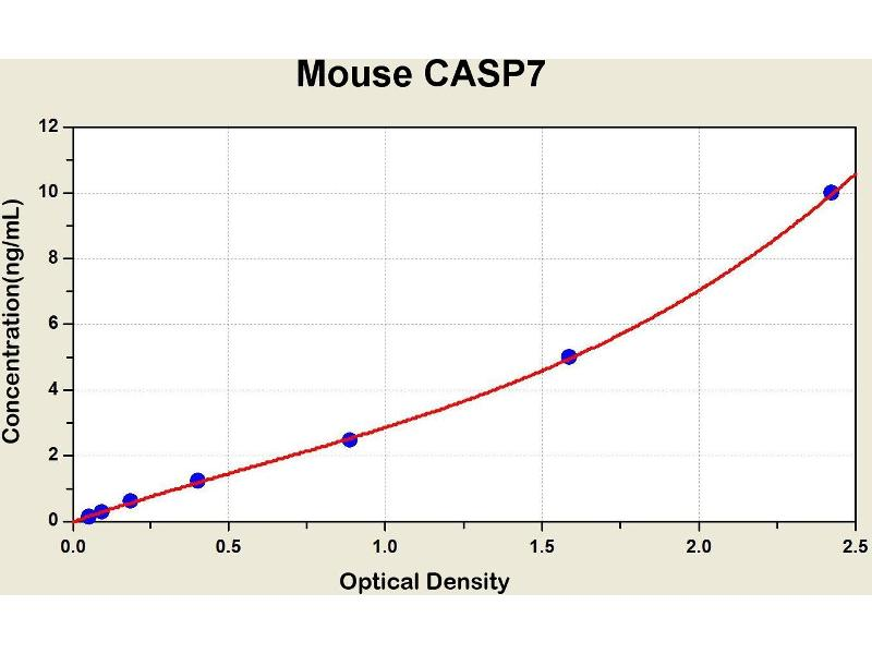 Caspase 7, Apoptosis-Related Cysteine Peptidase (CASP7) ELISA Kit