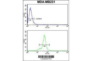 Flow Cytometry (FACS) image for anti-Cytoplasmic Protein NCK1 antibody (NCK Adaptor Protein 1) (AA 3-29) (ABIN652772)