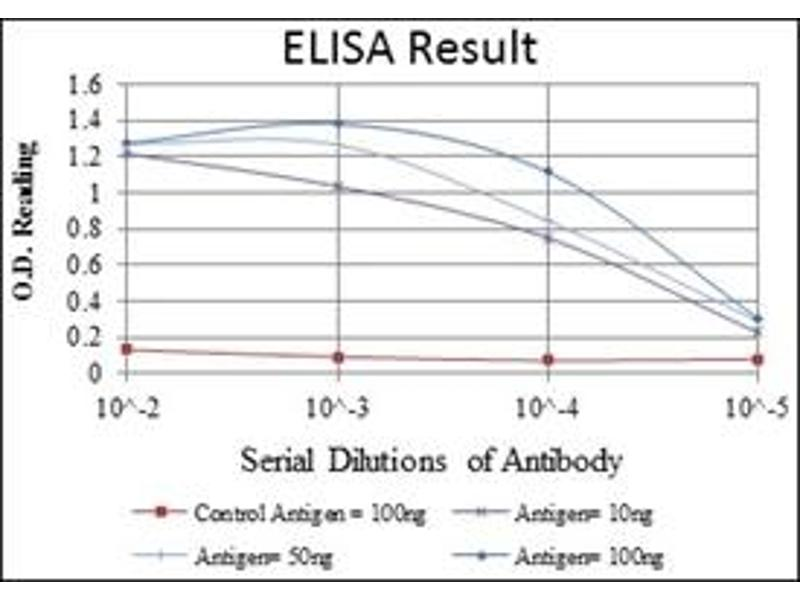 ELISA image for anti-MAPK6 antibody (Mitogen-Activated Protein Kinase 6) (ABIN1108134)