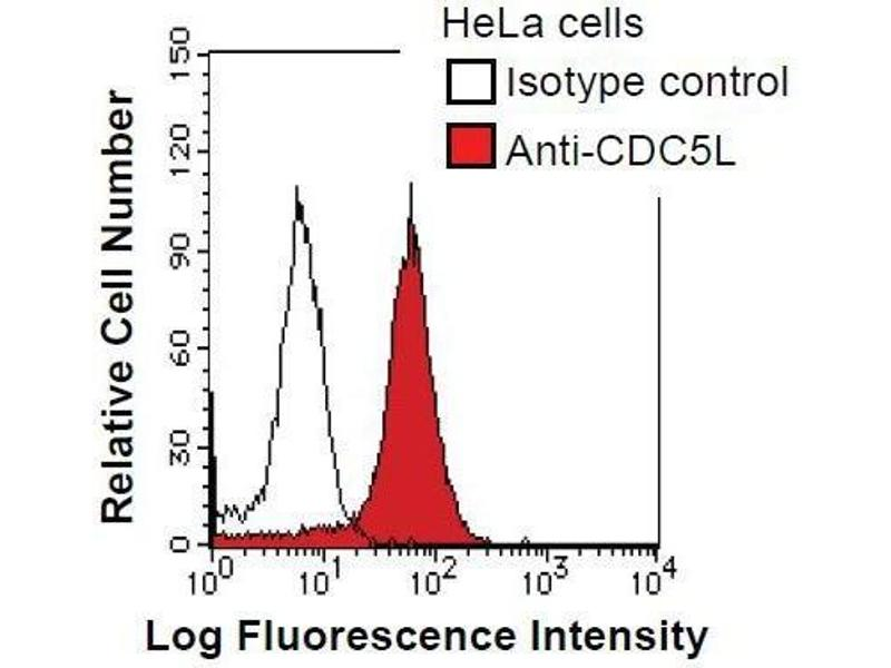 Flow Cytometry (FACS) image for anti-CDC5 Cell Division Cycle 5-Like (S. Pombe) (CDC5L) antibody (ABIN933108)
