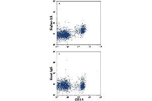 Flow Cytometry (FACS) image for anti-SIGLEC11 antibody (Sialic Acid Binding Ig-Like Lectin 11) (AA 17-543) (PE) (ABIN4895909)