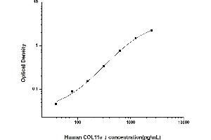 Image no. 1 for Collagen, Type XI, alpha 1 (COL11A1) ELISA Kit (ABIN6962112)