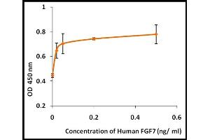 Image no. 1 for Fibroblast Growth Factor 7 (FGF7) (Active) protein (ABIN5509361)