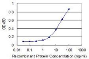 Image no. 1 for anti-Polymerase (RNA) II (DNA Directed) Polypeptide J2 (POLR2J2) (AA 1-115) antibody (ABIN531414)