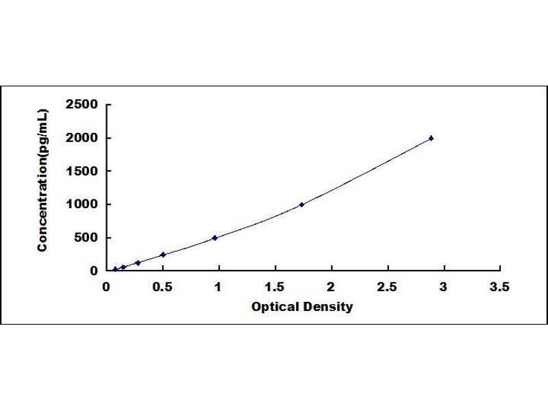 Inositol Polyphosphate-5-Phosphatase, 145kDa (INPP5D) ELISA Kit