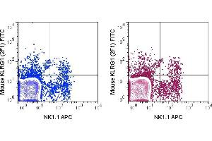 Image no. 1 for anti-Killer Cell Lectin-Like Receptor Subfamily G, Member 1 (KLRG1) antibody (FITC) (ABIN6961416)