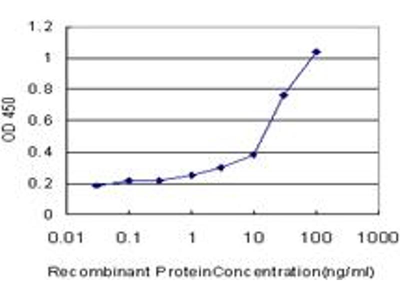 ELISA image for anti-Calcium/calmodulin-Dependent Protein Kinase II alpha (CAMK2A) (AA 305-410), (partial) antibody (ABIN513972)