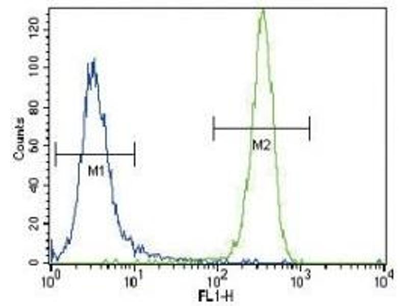 Flow Cytometry (FACS) image for anti-GTPase NRas (NRAS) (AA 147-179) antibody (ABIN3031131)