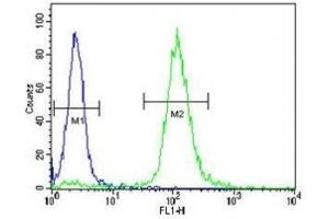 Flow Cytometry (FACS) image for anti-Neurotrophic Tyrosine Kinase, Receptor, Type 1 (NTRK1) antibody (ABIN3031990)
