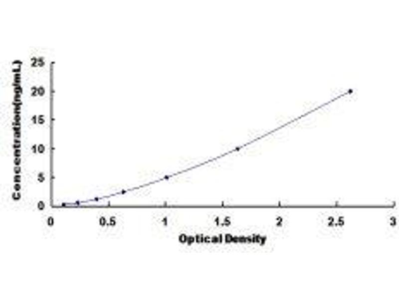 NADPH Oxidase 4 (NOX4) ELISA Kit
