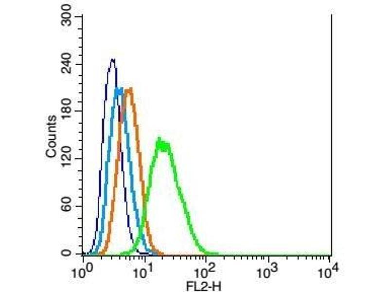 Flow Cytometry (FACS) image for anti-Glial Fibrillary Acidic Protein (GFAP) (AA 30-80) antibody (ABIN726200)