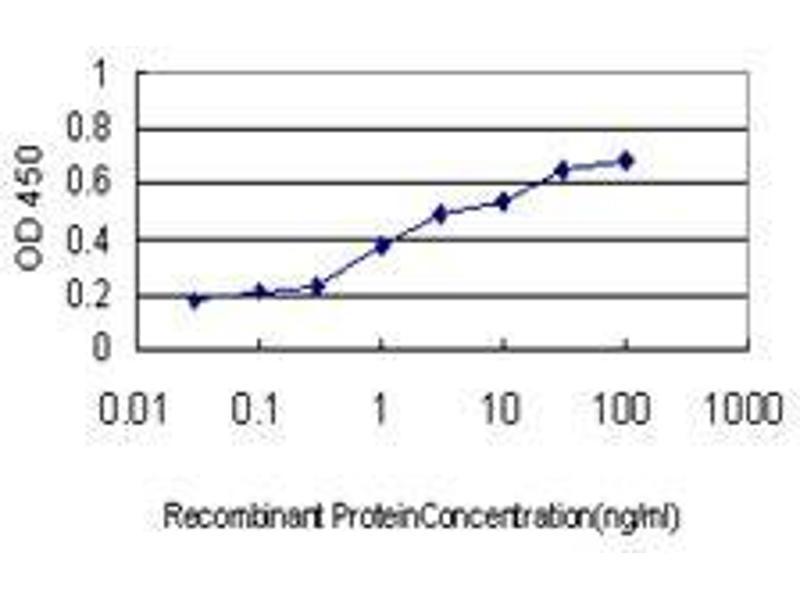 Immunohistochemistry (IHC) image for anti-N-Acetylneuraminic Acid Synthase (NANS) (AA 260-360) antibody (ABIN396101)