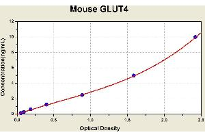 Image no. 2 for Solute Carrier Family 2 (Facilitated Glucose Transporter), Member 4 (SLC2A4) ELISA Kit (ABIN1115138)