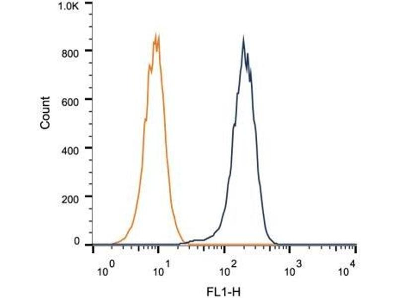 Flow Cytometry (FACS) image for anti-Sirtuin 1 (SIRT1) antibody (ABIN4353901)