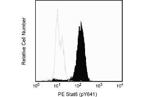 Flow Cytometry (FACS) image for anti-STAT6 antibody (Signal Transducer and Activator of Transcription 6, Interleukin-4 Induced) (pTyr641) (PE) (ABIN1177231)