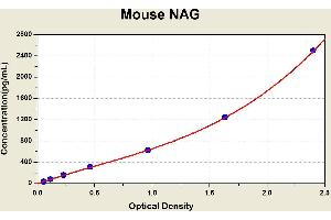 Image no. 1 for N-Acetyl beta-D-Glucosaminidase (NAG) ELISA Kit (ABIN1116108)