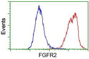 Flow Cytometry (FACS) image for anti-Fibroblast Growth Factor Receptor 2 (FGFR2) antibody (ABIN2454521)
