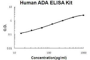 Image no. 1 for Adenosine Deaminase (ADA) ELISA Kit (ABIN3044709)