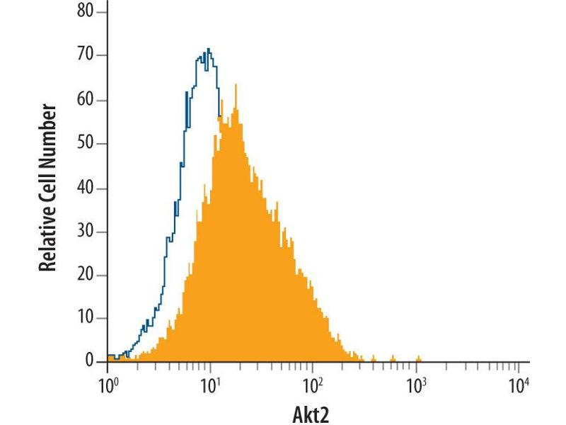 Flow Cytometry (FACS) image for anti-V-Akt Murine Thymoma Viral Oncogene Homolog 2 (AKT2) (AA 2-481) antibody (ABIN4899446)