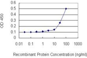 Image no. 2 for anti-BCL2-Like 2 (BCL2L2) (AA 1-193) antibody (ABIN513681)