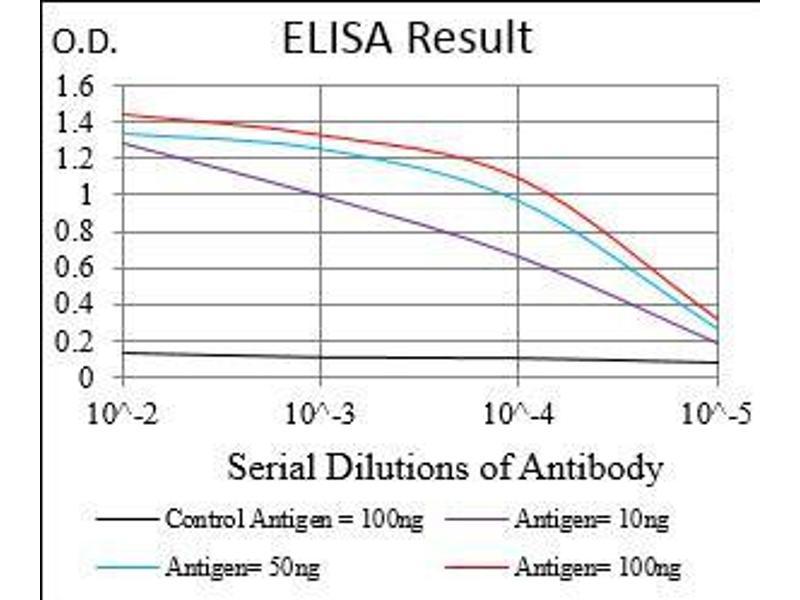 ELISA image for anti-SHC (Src Homology 2 Domain Containing) Transforming Protein 1 (SHC1) (AA 385-495) antibody (ABIN5542463)