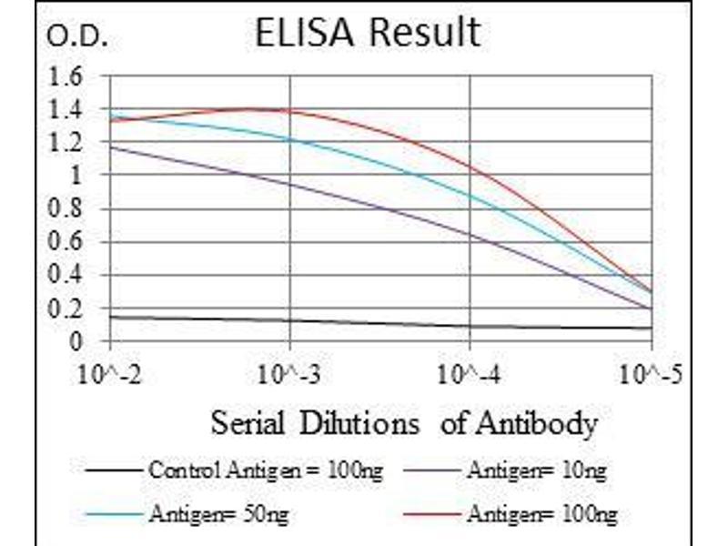ELISA image for anti-MutS Homolog 6 (E. Coli) (MSH6) antibody (ABIN969292)
