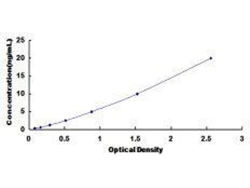 Histone Deacetylase 5 (HDAC5) ELISA Kit