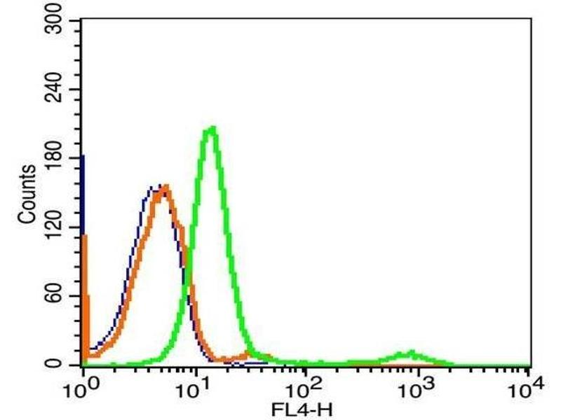 Flow Cytometry (FACS) image for anti-Membrane Metallo-Endopeptidase (MME) (AA 500-550) antibody (ABIN669666)