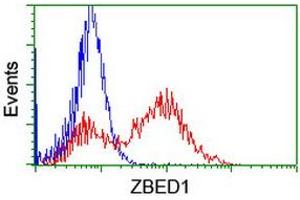 Image no. 4 for anti-Zinc Finger, BED-Type Containing 1 (ZBED1) antibody (ABIN1501793)