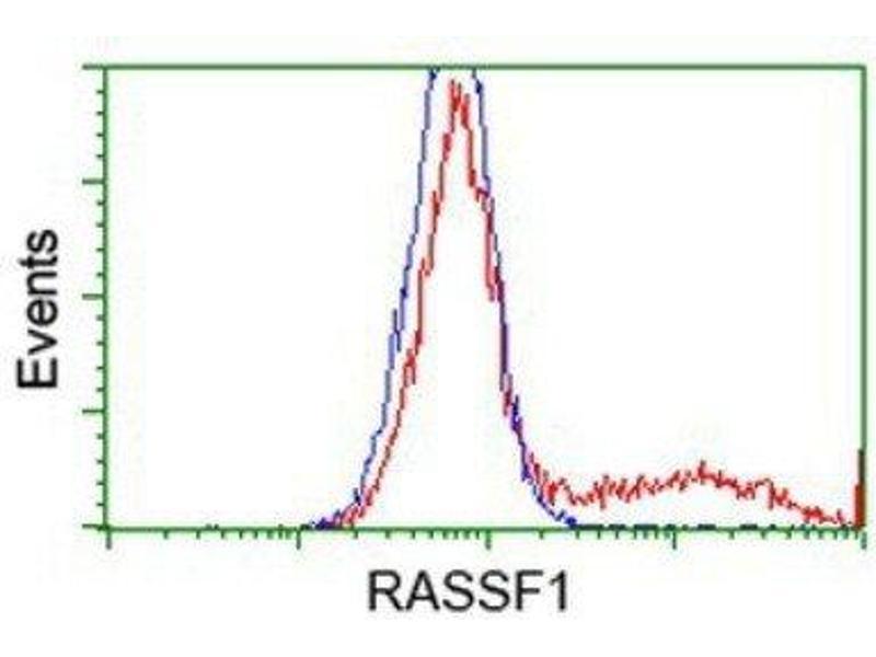 Flow Cytometry (FACS) image for anti-Ras Association (RalGDS/AF-6) Domain Family Member 1 (RASSF1) antibody (ABIN4349434)