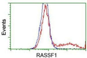 Flow Cytometry (FACS) image for anti-Ras Association (RalGDS/AF-6) Domain Family Member 1 (RASSF1) antibody (ABIN4349434)