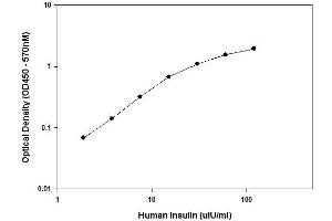 ELISA image for Insulin ELISA Kit (INS) (ABIN2506949)