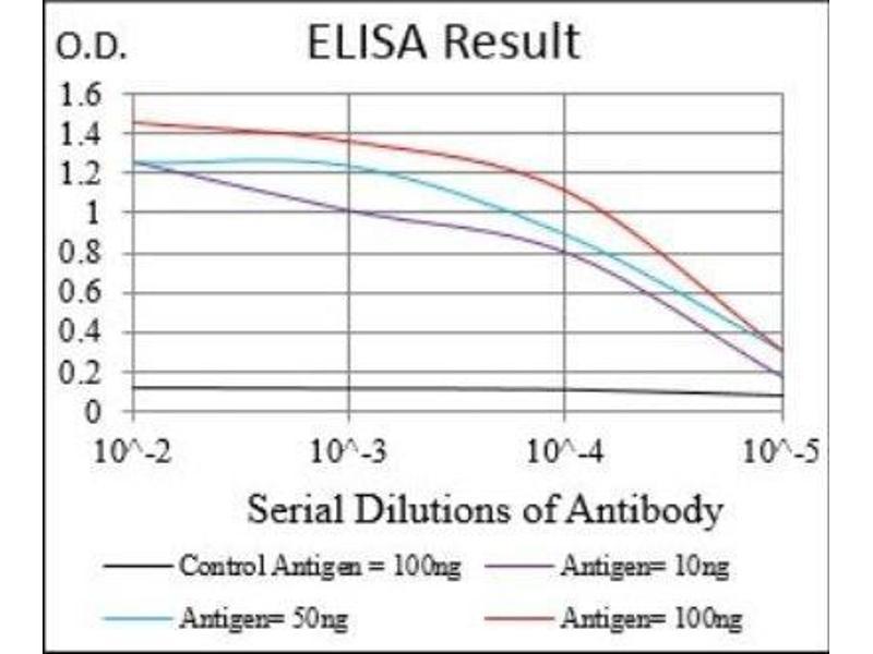 ELISA image for anti-Tubulin, epsilon 1 (TUBE1) antibody (ABIN4308817)