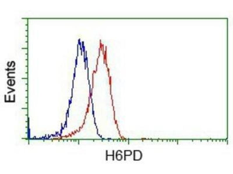 Flow Cytometry (FACS) image for anti-Glucose-6-Phosphate Dehydrogenase (G6PD) antibody (ABIN4314526)