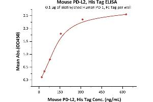 Image no. 3 for Programmed Cell Death 1 Ligand 2 (PDCD1LG2) (AA 20-219) protein (His tag) (ABIN2870761)
