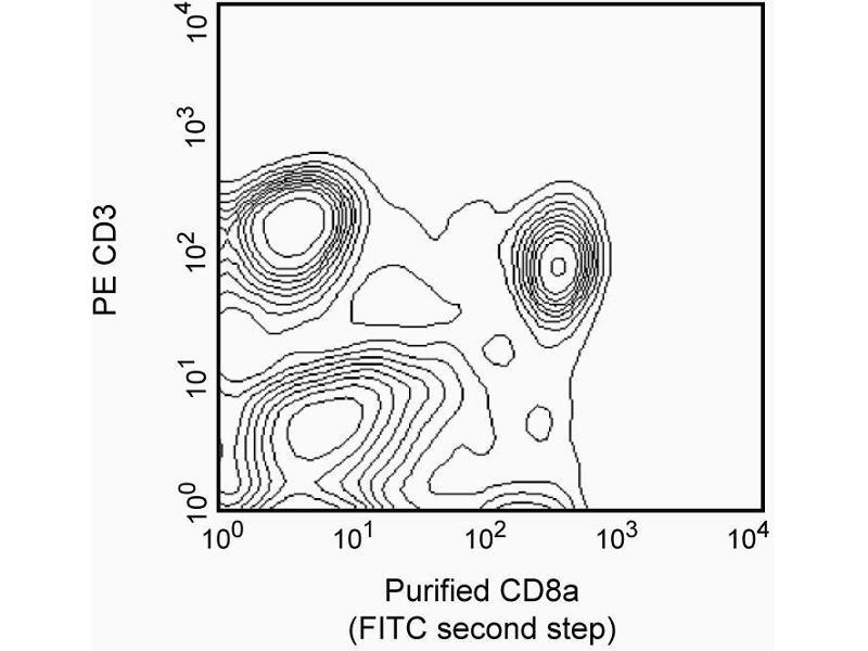 image for anti-CD8 antibody (CD8a Molecule) (ABIN967471)
