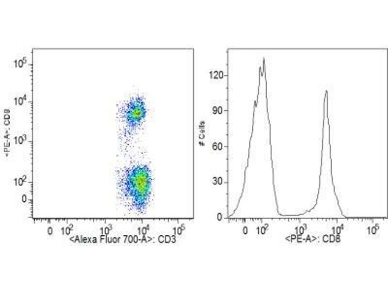 Flow Cytometry (FACS) image for anti-CD8 Antikörper (CD8a Molecule)  (PE) (ABIN4262030)