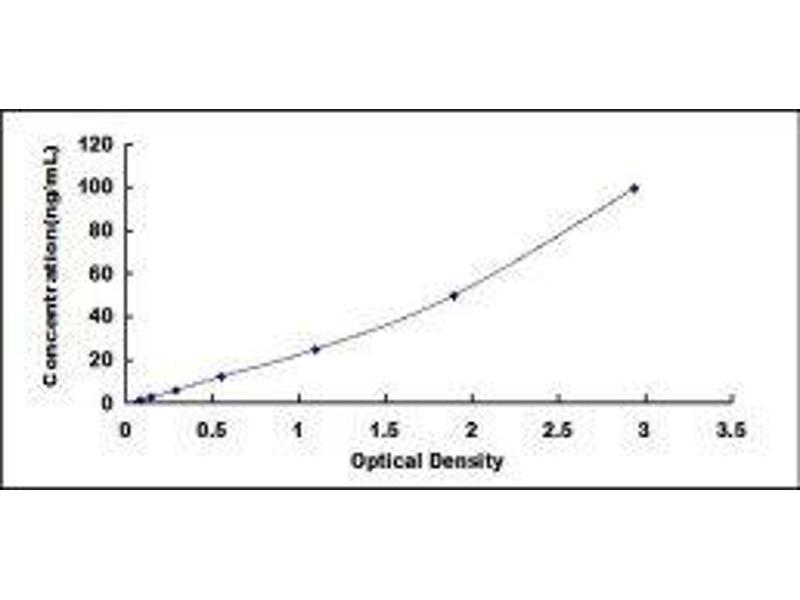 Lipopolysaccharide Binding Protein (LBP) ELISA Kit (5)