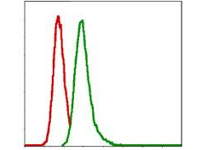 Flow Cytometry (FACS) image for anti-Glucose-6-Phosphate Dehydrogenase (G6PD) antibody (ABIN1107287)