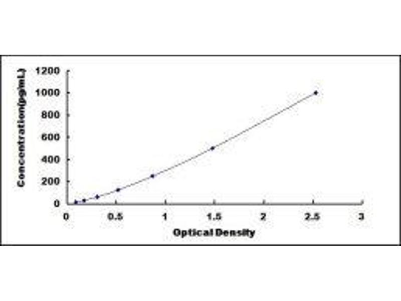 Fibroblast Growth Factor 2 (Basic) (FGF2) ELISA Kit