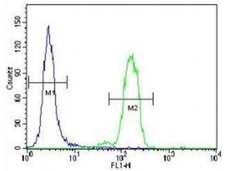 Flow Cytometry (FACS) image for anti-BAD antibody (BCL2-Associated Agonist of Cell Death) (AA 92-127) (ABIN3030135)