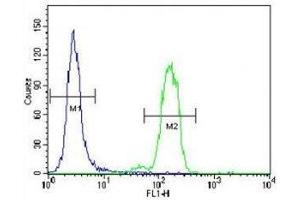 Flow Cytometry (FACS) image for anti-BCL2-Associated Agonist of Cell Death (BAD) (AA 92-127) antibody (ABIN3030135)