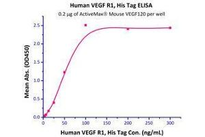 Image no. 2 for Vascular Endothelial Growth Factor (VEGF) (AA 27-146) (Active) protein (ABIN2181897)
