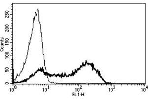 Flow Cytometry (FACS) image for anti-CD45 antibody (Protein tyrosine Phosphatase, Receptor Type, C)  (FITC) (ABIN1106408)