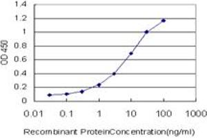 ELISA image for anti-Calcium Responsive Transcription Factor (CARF) (AA 621-718) antibody (ABIN566385)