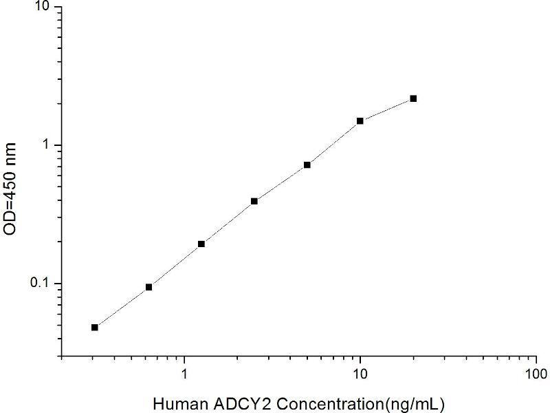 Adenylate Cyclase 2 (Brain) (ADCY2) ELISA Kit (2)